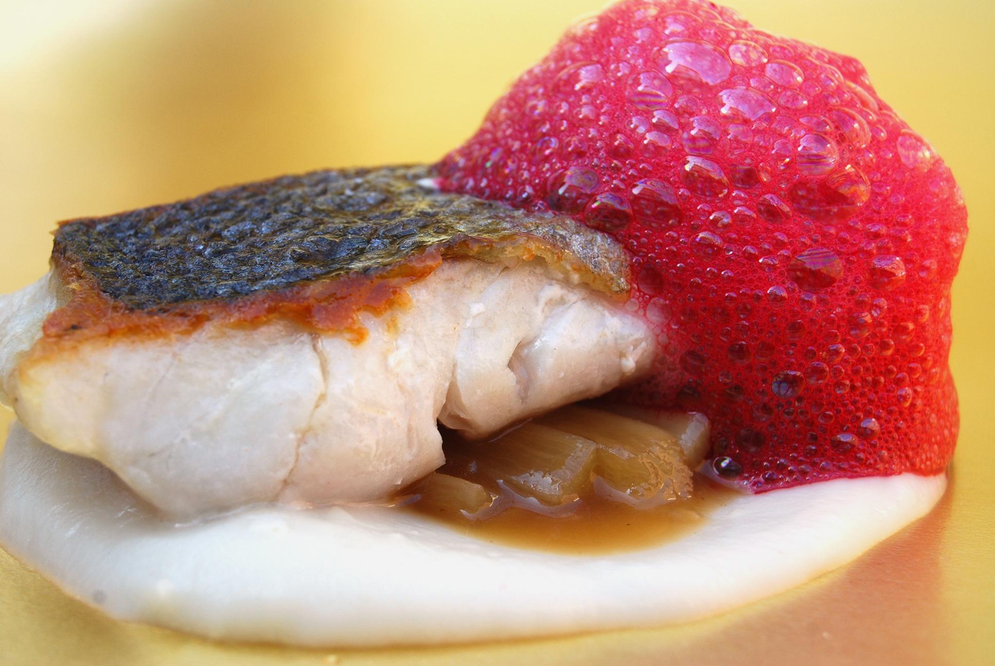 pescado de playa sobre tub rculos y ra ces receta rh pronto es
