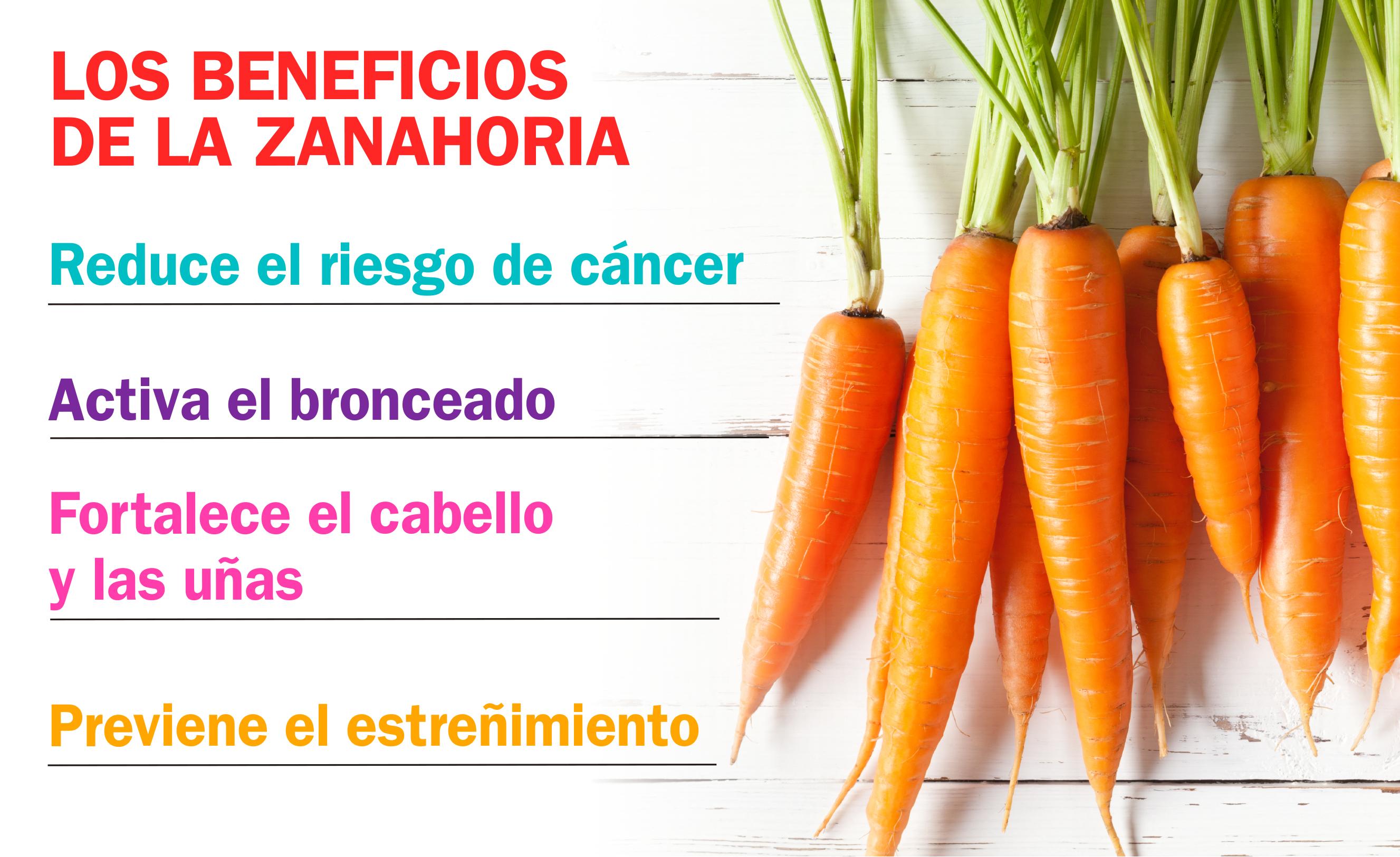 El Infografico Los Beneficios De La Zanahoria Gracias a su alto contenido en potasio y fósforo, la zanahoria funciona como regeneradora de. los beneficios de la zanahoria